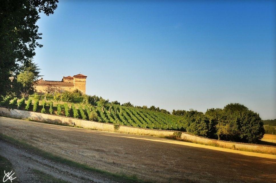 Castle of Ronco