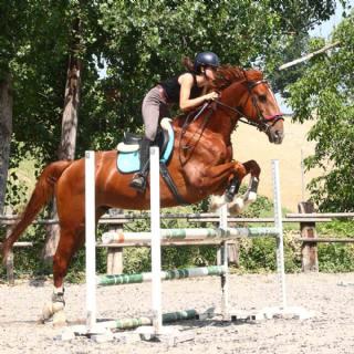 Agriturismo La Favorita - Equitazione