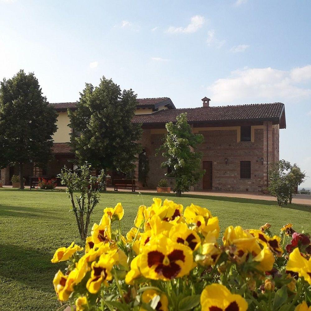 A.M.A. Azienda Agrituristica