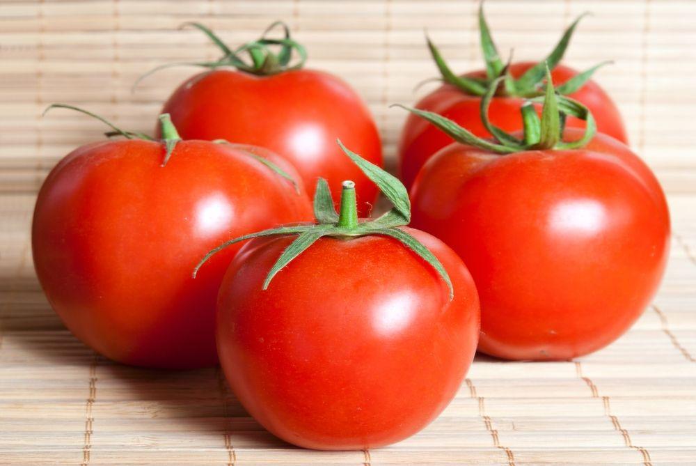 Pomodoro, l'oro rosso piacentino