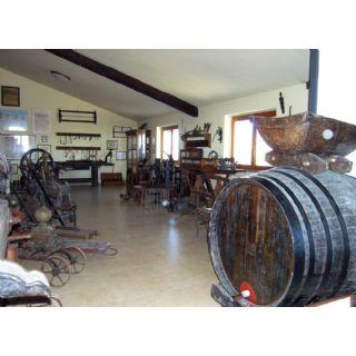 Museo della Vite e del Vino Fernando Pizzamiglio