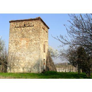 Sant'Angelo a Nure a Vigolzone
